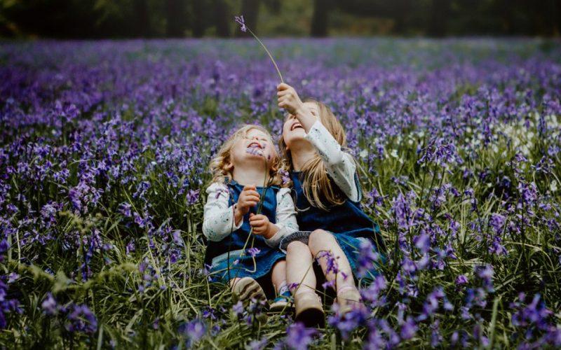 Devon bluebell photoshoot
